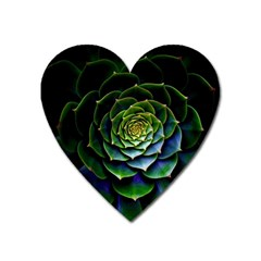 Nature Desktop Flora Color Pattern Heart Magnet