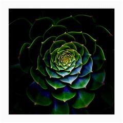 Nature Desktop Flora Color Pattern Medium Glasses Cloth