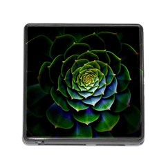 Nature Desktop Flora Color Pattern Memory Card Reader (square)