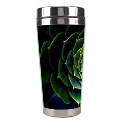 Nature Desktop Flora Color Pattern Stainless Steel Travel Tumblers