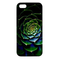 Nature Desktop Flora Color Pattern Iphone 5s/ Se Premium Hardshell Case