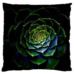 Nature Desktop Flora Color Pattern Large Flano Cushion Case (one Side)