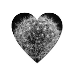 Dandelion Fibonacci Abstract Flower Heart Magnet