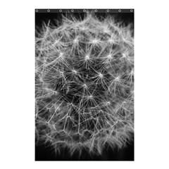 Dandelion Fibonacci Abstract Flower Shower Curtain 48  X 72  (small)