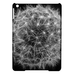 Dandelion Fibonacci Abstract Flower Ipad Air Hardshell Cases