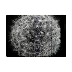 Dandelion Fibonacci Abstract Flower Ipad Mini 2 Flip Cases