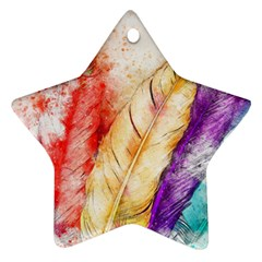 Feathers Bird Animal Art Abstract Ornament (star)