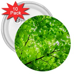 Green Wood The Leaves Twig Leaf Texture 3  Buttons (10 Pack)