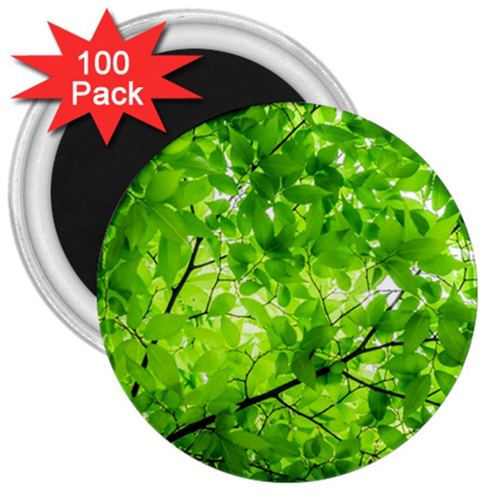 Green Wood The Leaves Twig Leaf Texture 3  Magnets (100 pack)