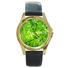 Green Wood The Leaves Twig Leaf Texture Round Gold Metal Watch by Nexatart