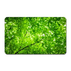 Green Wood The Leaves Twig Leaf Texture Magnet (rectangular)