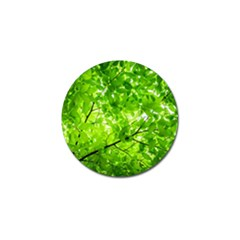 Green Wood The Leaves Twig Leaf Texture Golf Ball Marker