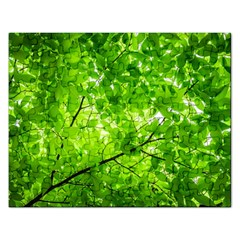 Green Wood The Leaves Twig Leaf Texture Rectangular Jigsaw Puzzl