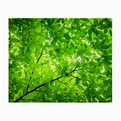 Green Wood The Leaves Twig Leaf Texture Small Glasses Cloth (2 Side)