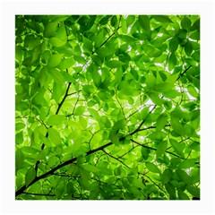 Green Wood The Leaves Twig Leaf Texture Medium Glasses Cloth (2 Side)