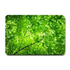 Green Wood The Leaves Twig Leaf Texture Small Doormat