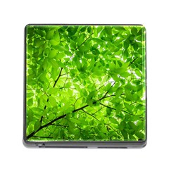 Green Wood The Leaves Twig Leaf Texture Memory Card Reader (square)