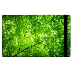 Green Wood The Leaves Twig Leaf Texture Apple Ipad 2 Flip Case