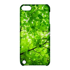 Green Wood The Leaves Twig Leaf Texture Apple Ipod Touch 5 Hardshell Case With Stand by Nexatart