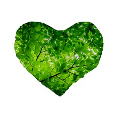 Green Wood The Leaves Twig Leaf Texture Standard 16  Premium Flano Heart Shape Cushions