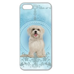 Cute Little Havanese Puppy Apple Seamless Iphone 5 Case (clear) by FantasyWorld7