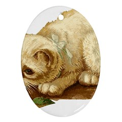 Cat 1827211 1920 Oval Ornament (two Sides) by vintage2030