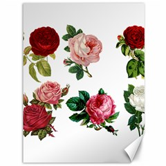 Roses 1770165 1920 Canvas 36  X 48   by vintage2030