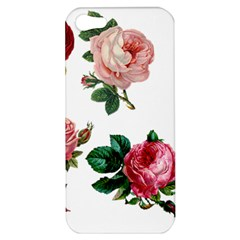 Roses 1770165 1920 Apple Iphone 5 Hardshell Case by vintage2030