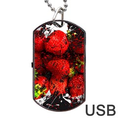 Strawberry Fruit Food Art Abstract Dog Tag Usb Flash (one Side)