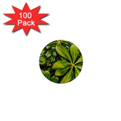 Top View Leaves 1  Mini Magnets (100 Pack)  by dflcprints