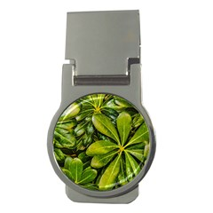 Top View Leaves Money Clips (round)  by dflcprints