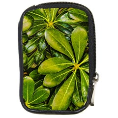 Top View Leaves Compact Camera Cases by dflcprints