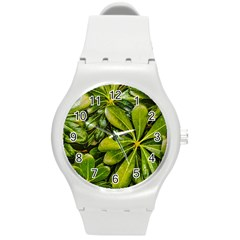 Top View Leaves Round Plastic Sport Watch (m) by dflcprints