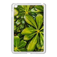 Top View Leaves Apple Ipad Mini Case (white) by dflcprints