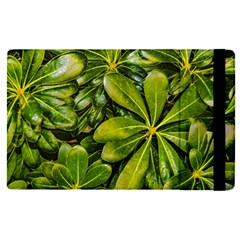 Top View Leaves Apple Ipad Pro 9 7   Flip Case by dflcprints