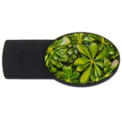 Top View Leaves Usb Flash Drive Oval (4 Gb) by dflcprints