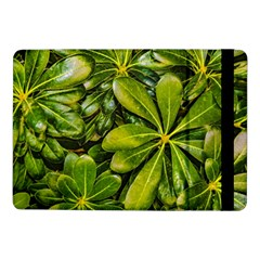 Top View Leaves Samsung Galaxy Tab Pro 10 1  Flip Case by dflcprints
