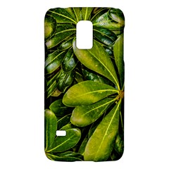 Top View Leaves Galaxy S5 Mini by dflcprints