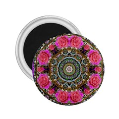 Roses In A Color Cascade Of Freedom And Peace 2 25  Magnets by pepitasart