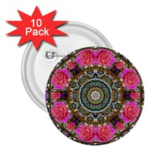 Roses In A Color Cascade Of Freedom And Peace 2 25  Buttons (10 Pack)  by pepitasart