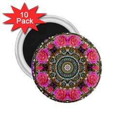 Roses In A Color Cascade Of Freedom And Peace 2 25  Magnets (10 Pack)  by pepitasart
