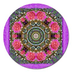 Roses In A Color Cascade Of Freedom And Peace Magnet 5  (round) by pepitasart