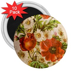 Poppy 2507631 960 720 3  Magnets (10 Pack)  by vintage2030