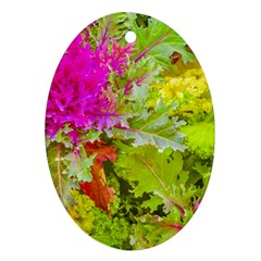 Colored Plants Photo Ornament (oval) by dflcprints