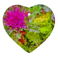 Colored Plants Photo Ornament (heart) by dflcprints