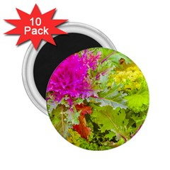 Colored Plants Photo 2 25  Magnets (10 Pack)  by dflcprints