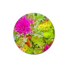 Colored Plants Photo Magnet 3  (round) by dflcprints