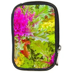 Colored Plants Photo Compact Camera Cases by dflcprints