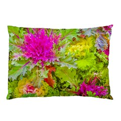 Colored Plants Photo Pillow Case (two Sides) by dflcprints