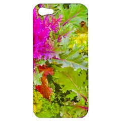 Colored Plants Photo Apple Iphone 5 Hardshell Case by dflcprints